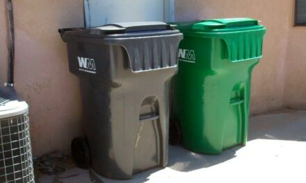 Recycling pickup decreases to limit bills