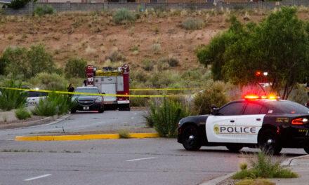 Police ID teenage shooting victim