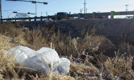 ABQ plastic-bag ban 'overflows' to RR Albertsons