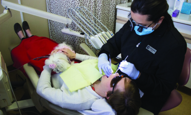 Therapy dogs calm dental anxiety