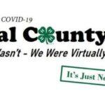 4-H hosts virtual livestock auction