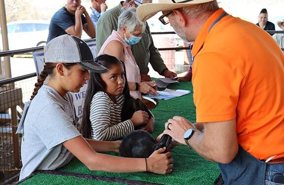 PHOTOS: The 4-H Fair returns to the Sandoval County Fairgrounds