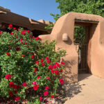 Garden tour blooms again